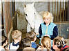 Экскурсии, общение с лошадьми