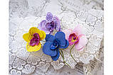 "Ножи для вырубки ""Набор Орхидеи, Анютины глазки"" от AgiArt, фото 5"