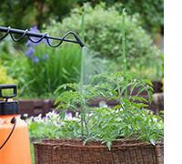 фунгициды препараты для защиты растений, фото севенмарт