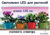 Фитосветильник полного спектра линейный для выращивания цветов и других растений 220V led 16w 120см