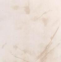 """Панель пластиковая Оникс Бежевый  ON-06  """"Panelit""""  6,00м*0,25м*8мм"""