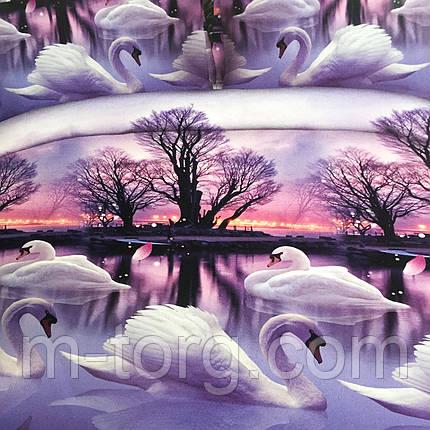 """""""Лебеди"""" Постельное белье 3D эффект 180/220, нав-ки 70/70, фото 2"""