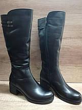 Зимние сапоги из натуральной кожи на небольшом каблуке Romax 5345, фото 3