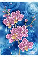 """Схема для частичной вышивки бисером """"Орхидея 2"""""""