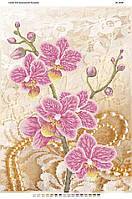 """Схема для частичной вышивки бисером """"Орхидея 3"""""""