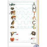 Зошит для письма і розвитку мовлення 1 клас Частина 1 Авт: Тарнавська С. Вид: Генеза, фото 5