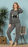 Пижама Женская Реглан + Штаны Размер L (46)