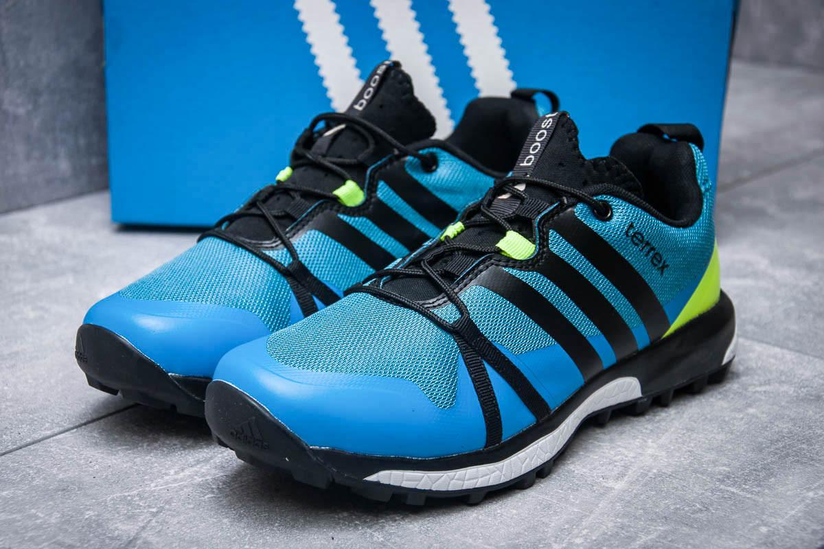 Кроссовки мужские 11661, Adidas Terrex Boost, синие ( размер 41 - 26,0см )