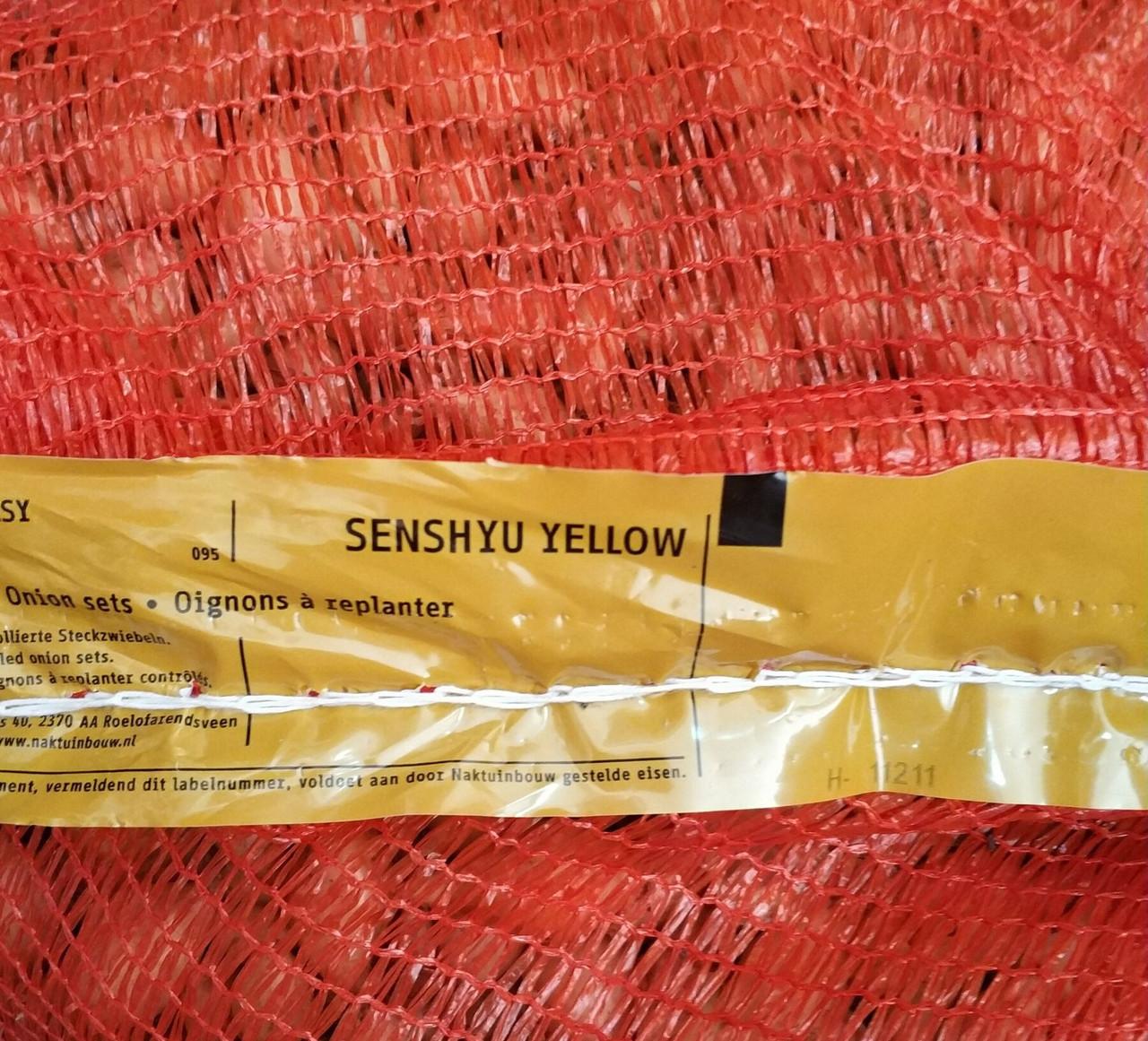 Цибуля озима Сеншуй 10кг