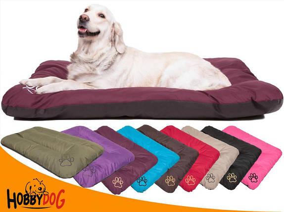Лежак для кошки или собаки 90х60 см. HobbyDog, фото 2