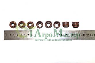 Набор сальников клапанов (8 шт.) Д-240, МТЗ-80