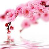 Журнальный стол овальный Sakura стеклянный, фото 3