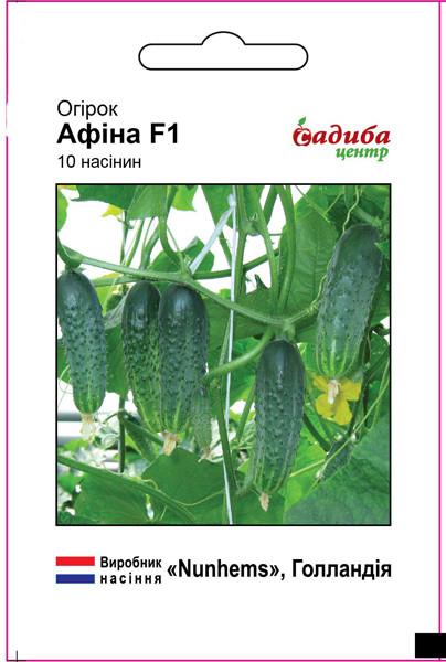 Семена огурца Афина F1, Nunhems 10 шт