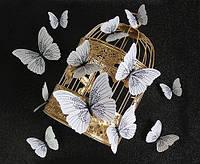 Объемные 3D бабочки на стену (обои) для декора Белые с черным орнаментом