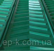 Лента конвейерная с гофробортами, фото 3