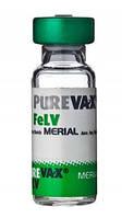 Вакцина Пюревакс FELV (Merial)  для защиты кошек от вирусного лейкоза