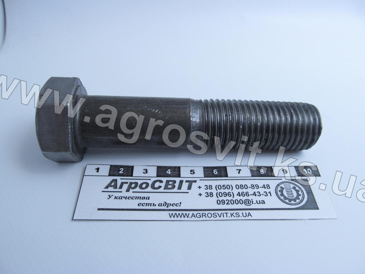 Болт М22х100 (ГОСТ 7805 4.8)