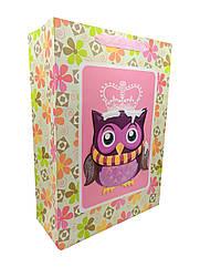 Подарунковий пакет 7503-2L-3 (Сови)Квадрат рожевий -, р-р 30*40*10см,