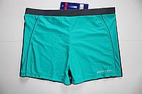 Плавки-шорты мужские Atlantic бирюза с серым, фото 1