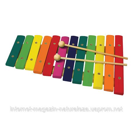 Ксилофон ТМ Svoora 12 нот, фото 2