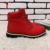 Зимние ботинки (на меху)  женские Timberland  11-061 ⏩ [ 40 последний размер ], фото 1