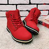 Зимние ботинки (на меху)  женские Timberland  11-061 ⏩ [ 40 последний размер ], фото 2