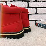 Зимние ботинки (на меху)  женские Timberland  11-061 ⏩ [ 40 последний размер ], фото 3
