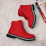 Зимние ботинки (на меху)  женские Timberland  11-061 ⏩ [ 40 последний размер ], фото 5