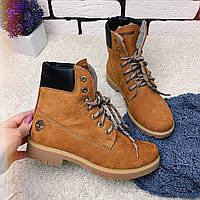 Зимние ботинки  (на меху) женские Timberland  13052 ⏩ [ 39,40 ], фото 1