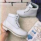 Зимові черевики (на хутрі) жіночі Timberland 11-117 ⏩РОЗМІР [ 39,41 ], фото 4