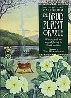 Druid Plant Oracle, фото 1