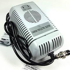 Зарядний пристрій Profi 48 V 2.5 A для дитячого електро квадроцикла