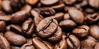 Какой кофе выбрать настоящему гурману