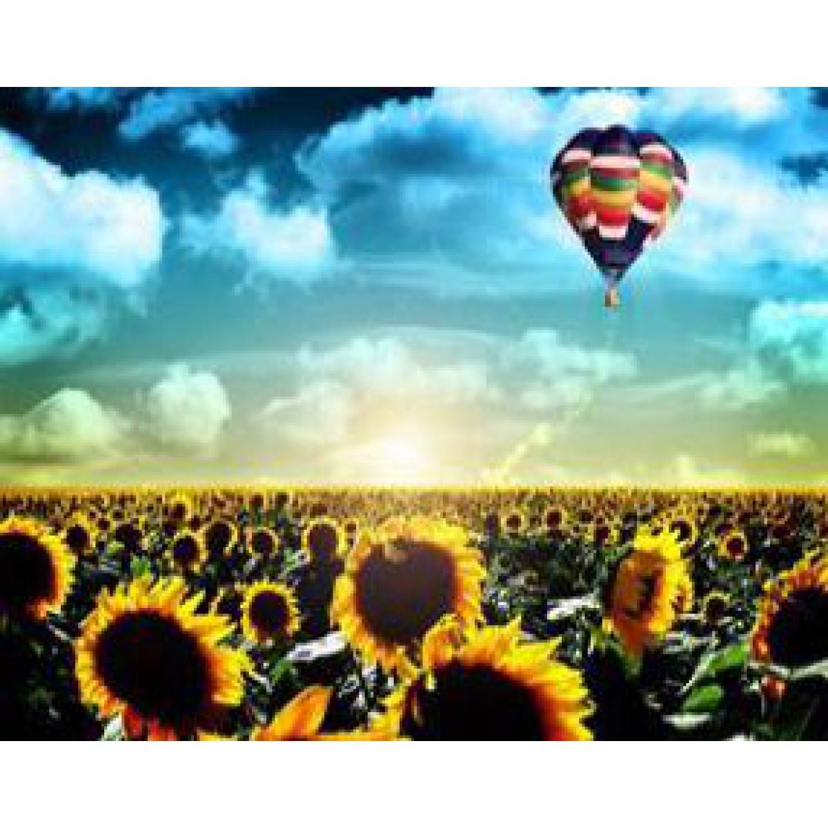 """Картина по номерам на дереве 40*50 """"Воздушный шар""""  RSB8244 в подарочной коробке"""