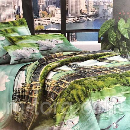 """""""Лебеди"""" Постельное белье 3D эффект евро размер 200/210,нав-ки 70/70, фото 2"""