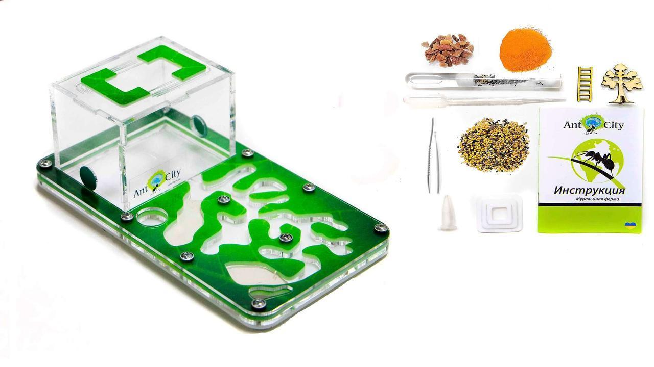 "Тришарова Мурашина Ферма Smart ""Амазонка"": мурахи, корм, декор (18х10х7 см)"