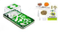 "Тришарова Мурашина Ферма Smart ""Амазонка"": мурахи, корм, декор (18х10х7 см), фото 1"