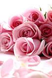 Журнальный стол прямоугольный с полкой Pink Roses стеклянный, фото 3