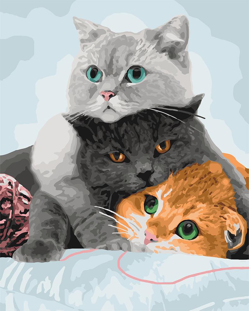 Картина за номерами. Три кота 40х50см арт. КНО4151