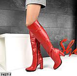 Шикарные демисезонные ботфорты на каблуке с декором сзади, фото 4