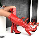 Шикарные демисезонные ботфорты на каблуке с декором сзади, фото 6