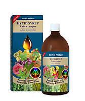 Хайсид сироп (изжога, гастрит, язва желудка, кишечника) HYCID SYRUP (200 ml)