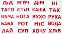 """Карточки большие украинские с фактами """"Читання за Доманом"""" 20 слів, в пак. 5*25см, Украина, ТМ Вундеркинд с"""