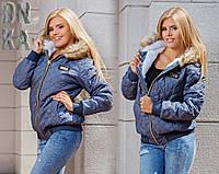 Женская зимняя куртка Philipp Plein дг593, фото 1