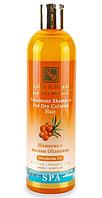 Шампунь для сухого і фарбованого волосся з маслом обліпихи Health & Beauty (400мл.)