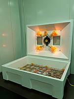 """Инкубатор на 100 яиц. ТМ """"Теплуша"""" механический. Ламповый обогрев, вентилятор, цифровой терморегулятор."""