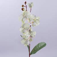 Орхидея 60 см. кремово-салатовая с розовинкой Цветы искусственные