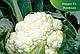 Семена цветной капусты Кердос F1 \ Kerdous F1 1000 семян Seminis, фото 4