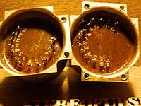 Трансформатор   И24.730.163      И24.700.004, фото 1
