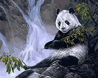 Картины по номерам 40×50 см. Панда с бамбуком Художник Лаура Марк-Файнберг